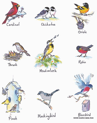 RS112  Birds 2
