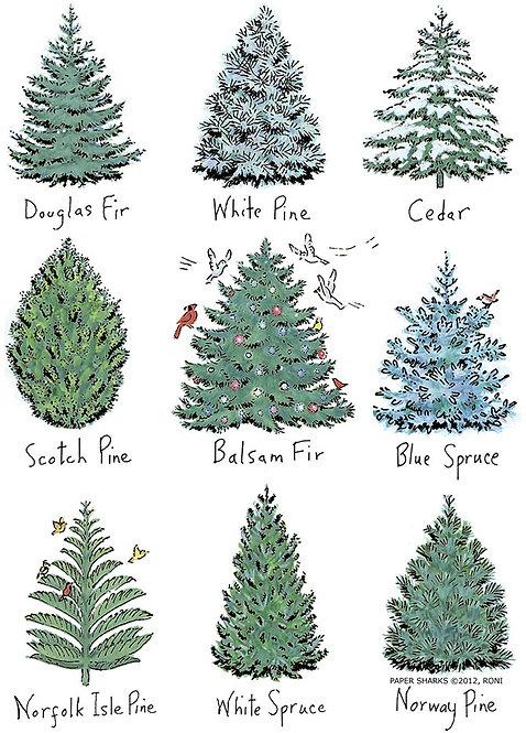 RS482  Pine Trees Apron