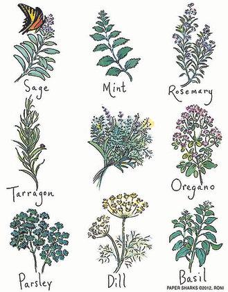 RS136 Kitchen Herbs