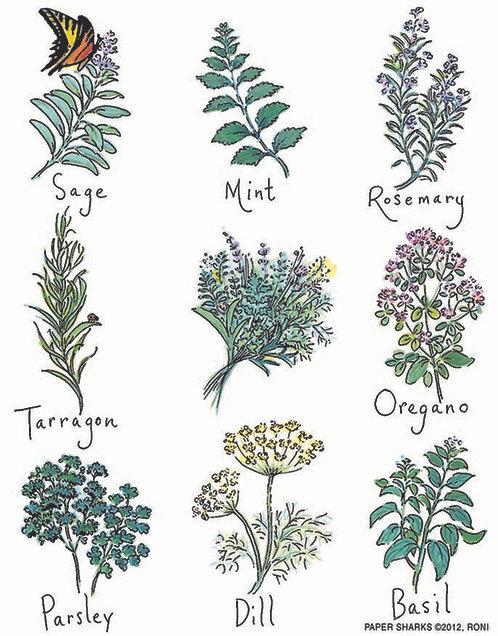 RS136 Kitchen Herbs Apron