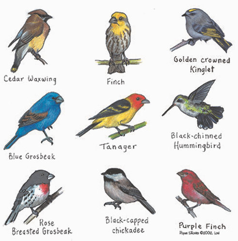 LW104  Birds Apron