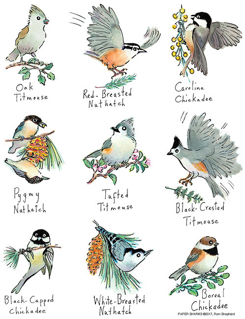 RS163 Little Birds Apron