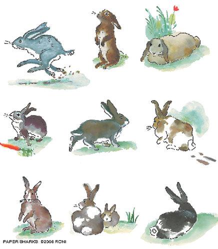 RS805  Rabbits Apron