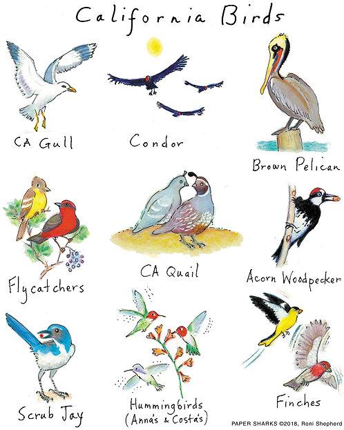 RS168 California Birds Apron