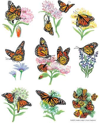 RS162 Monarchs Apron
