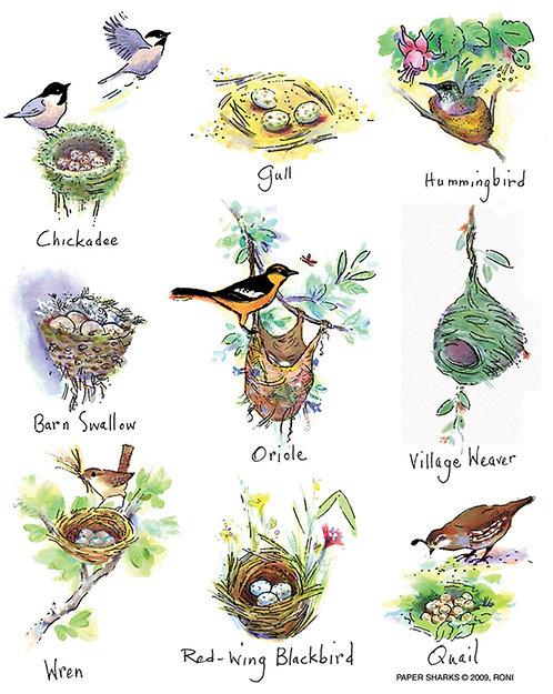 RS121  Bird Nests