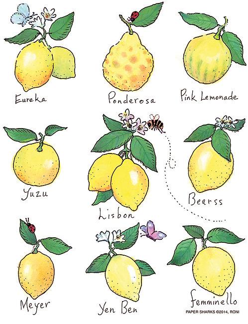RS149  Lemons