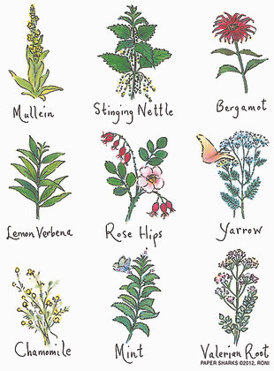RS137  Herbal Teas Aprons