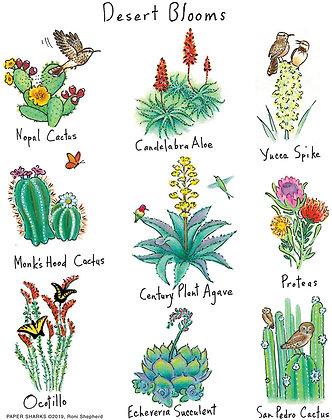 RS176 Desert Blooms