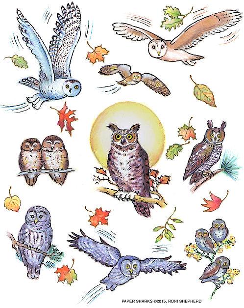 RS321 Night Owls Apron