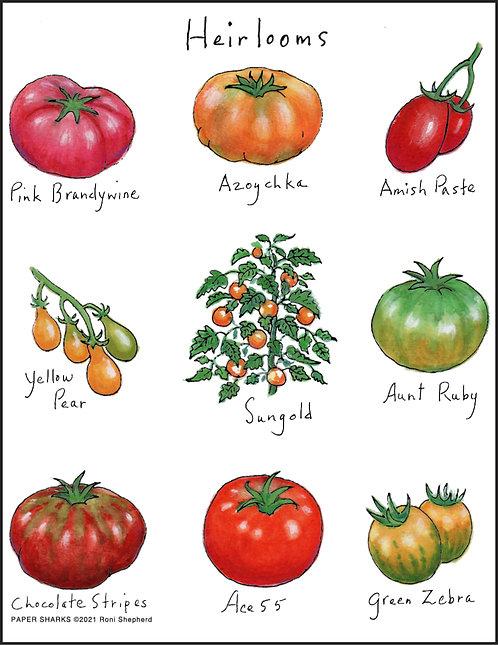 RS187 Heirloom Tomatoes