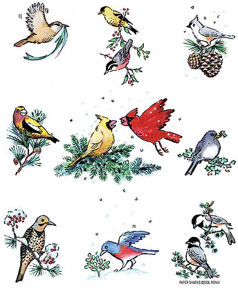 RS458  Winter Birds Apron