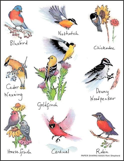 RS184 Backyard Birds Cardinal