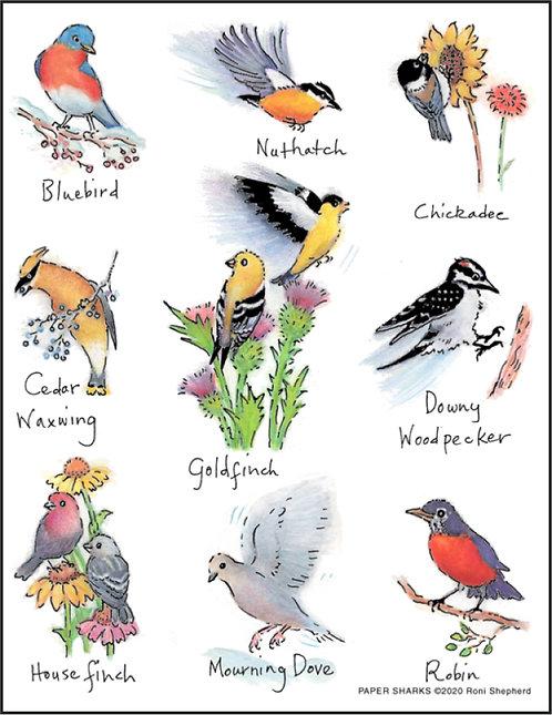 RS183 Backyard Birds Dove