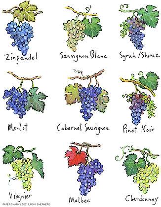 RS157  Wine Grapes Apron