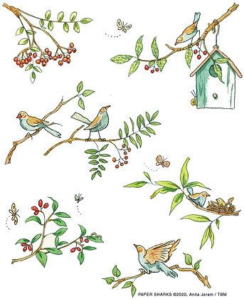 AJ528 Bird Branches Apron