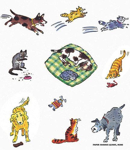 RS804  Dog & Cat Life