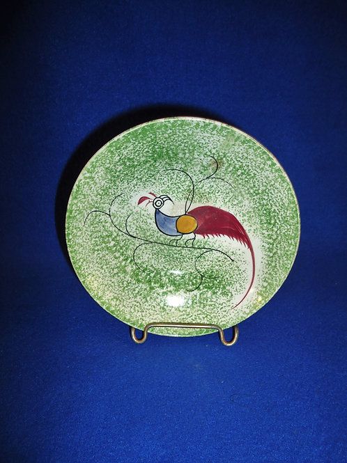 Green Spatterware Saucer with Peafowl by Reed & Taylor, Yorkshire #4627