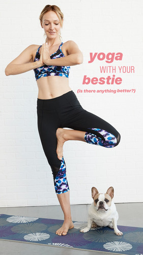 081318_MondayMotivation_DogYoga-1.JPG