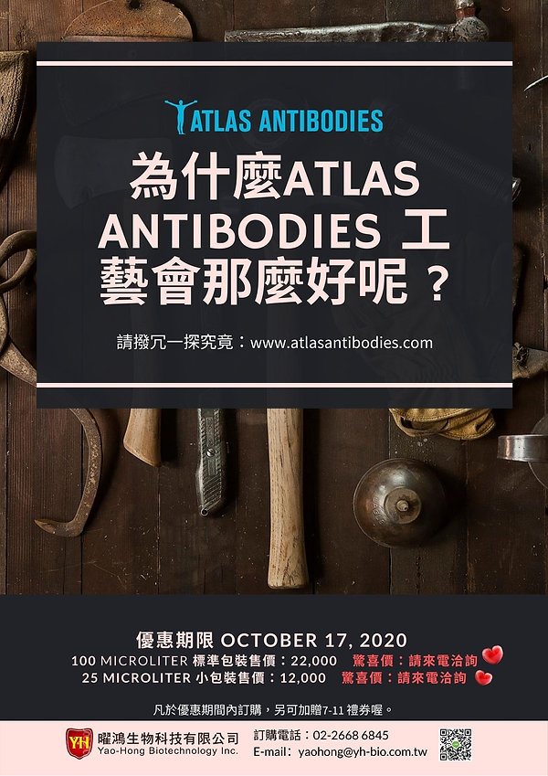 atlas ab2.jpg