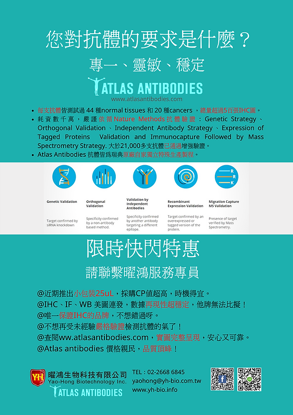 Atlas antibodies.png
