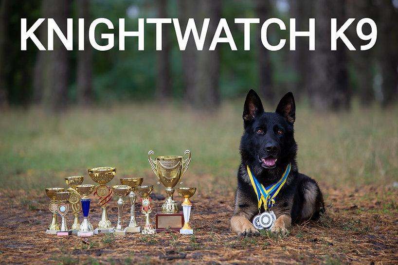 german-shepherd-dog-with-awards-natural-background_edited.jpg