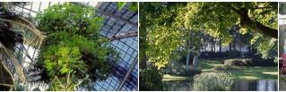 Le Jardin des Plantes !