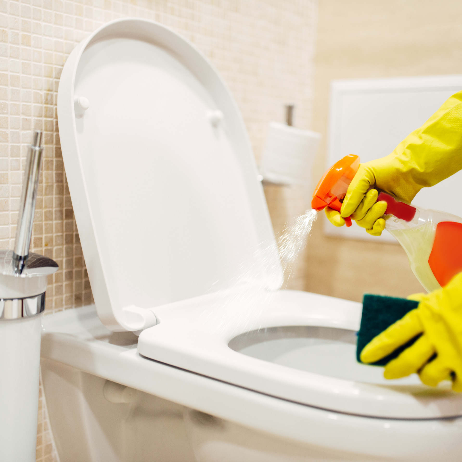 maid-cleans-the-bidet-with-a-cleaning-sp