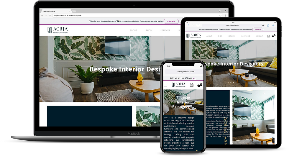 Web Design : Aorta