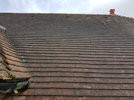 Before - Roof Cleaning
