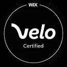Wix Velo