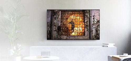 """55""""Ultra HD 4K Pro HDR Master OLED Televisions - TX-55HZ1000B"""