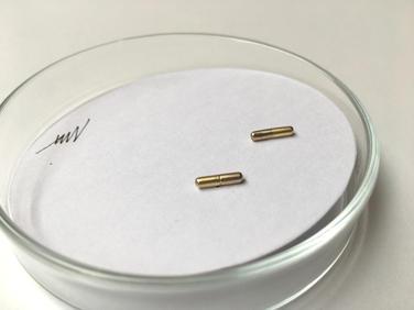 náušnice Placebo small gold