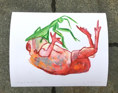Frog & Mantis