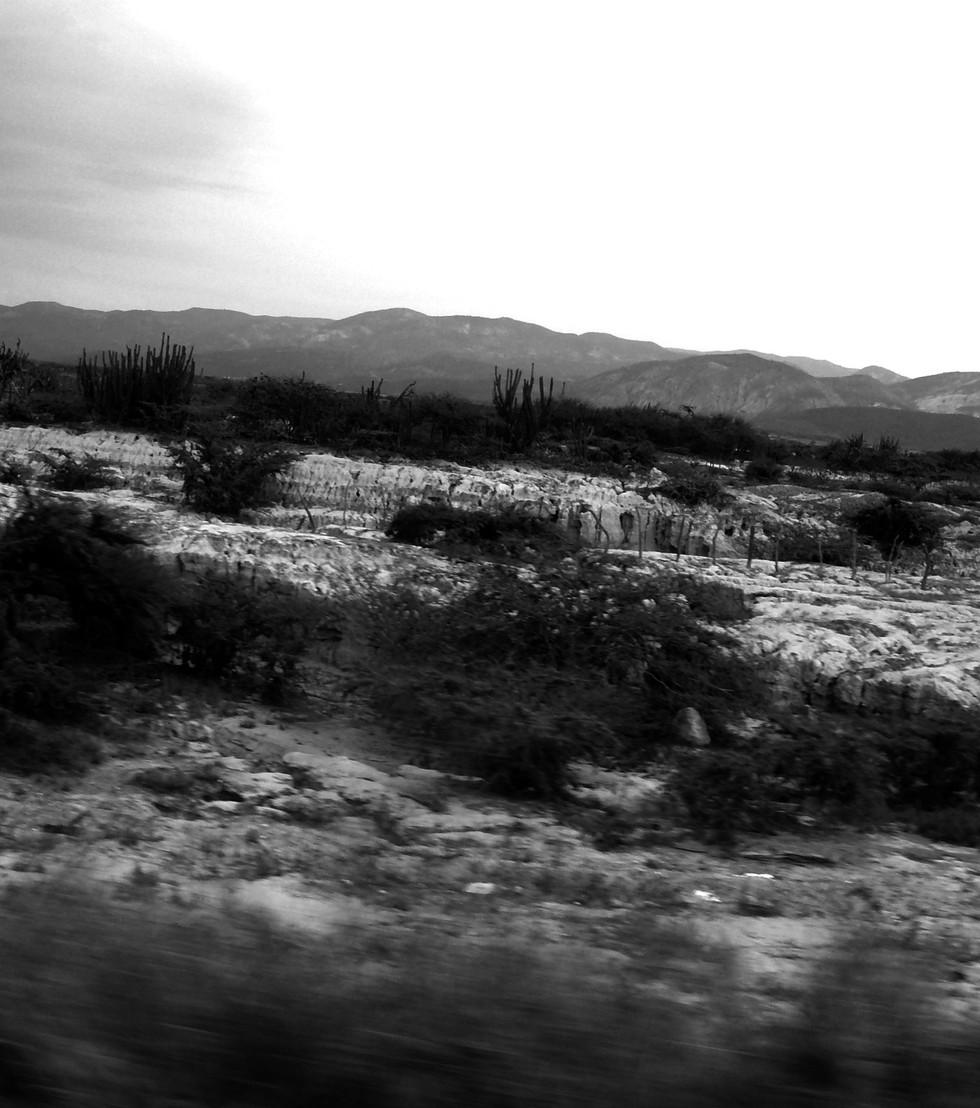 paisaje1.jpg