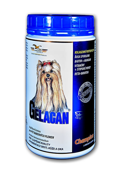Gelacan Champion Color 500g