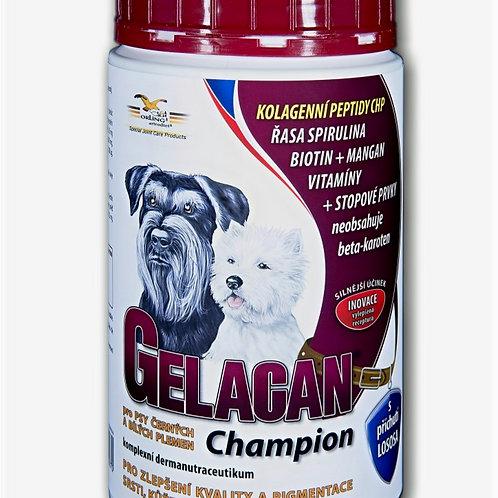 Gelacan Champion Black & White 500g