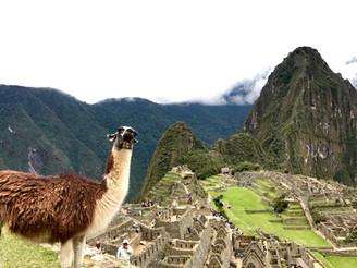 Machu Picchu, o maior tesouro Inca e um dos portais energéticos do mundo!