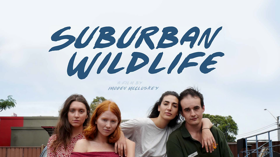 SuburbanWildlife_EPK_V82.png