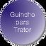 Guincho Reflorestamento