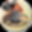 Roçadeira RF500