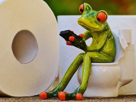 Flushed Away:  Choosing a toilet for your new bathroom Part 2