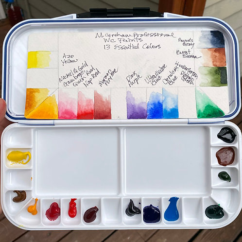13 Essentials -- Palette of Professional Paints