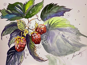 awrahtz.raspberries.10x15.jpg