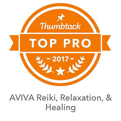 logo for being a Thumbtack Top Pro