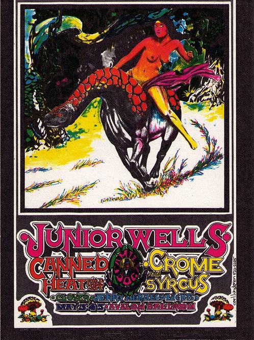 JUNIOR WELLS, 05/1968