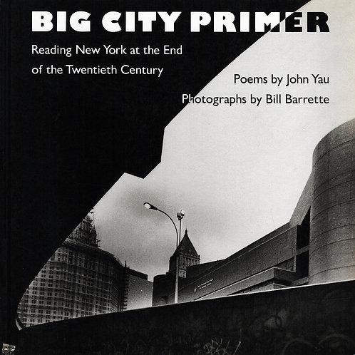 BIG CITY PRIMER