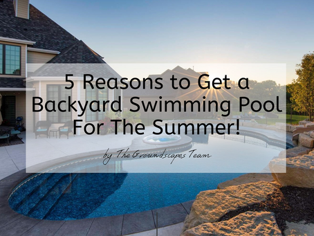 5 Reasons to Get a Backyard Swimming Pool For The Summer!