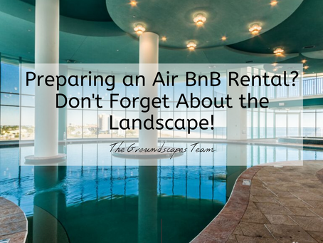 Preparing an Air BnB Rental? Don't Forget About the Landscape!