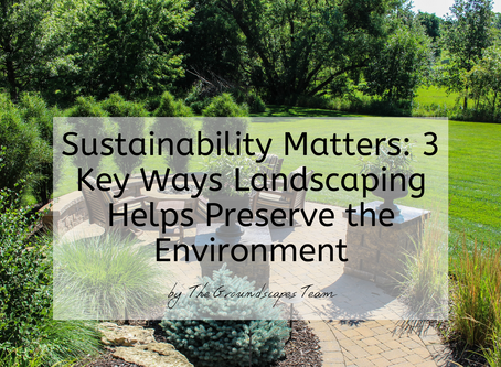 Sustainability Matters: 3 Key Ways Landscaping Helps Preserve the Environment